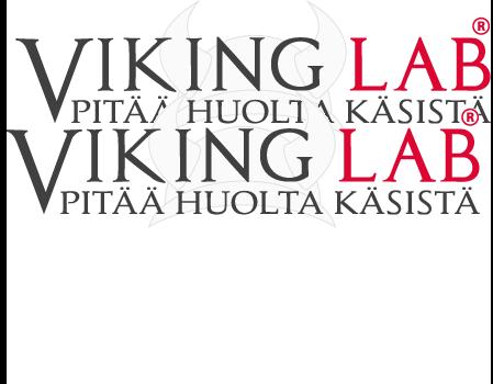 vikinglab-logo-1